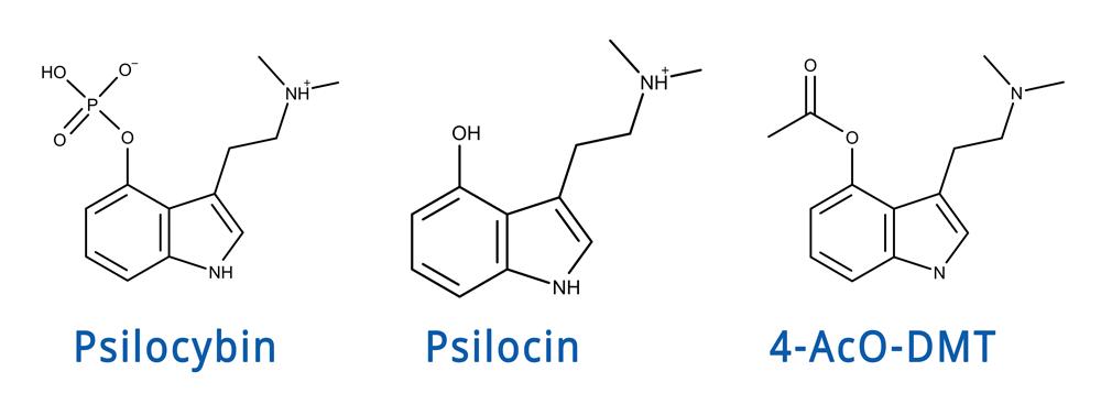 4acodmt vs psilocybin vs psilocin vergleich comparison molecule molekülstruktur
