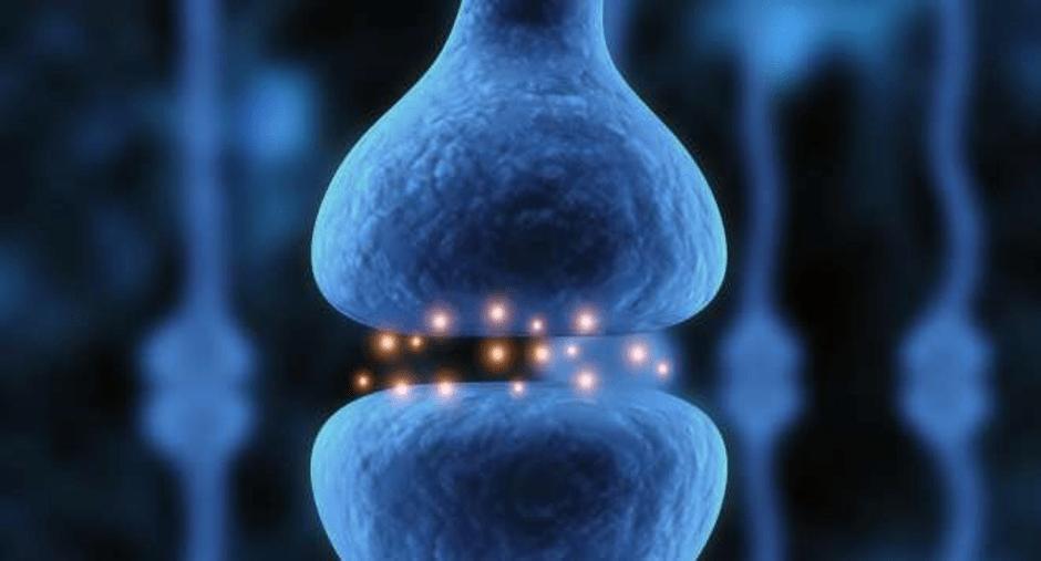 neuronen neuron depressionen im gehirn depression pharmakologie