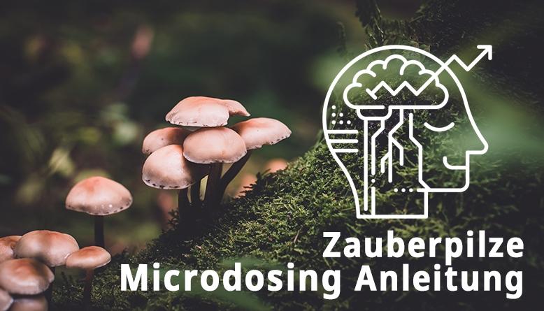 Microdosing Anleitung