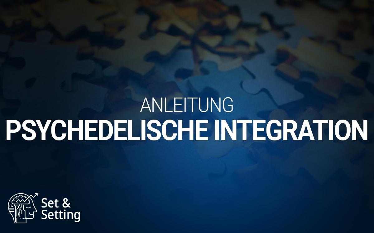 Psychedelische Integration