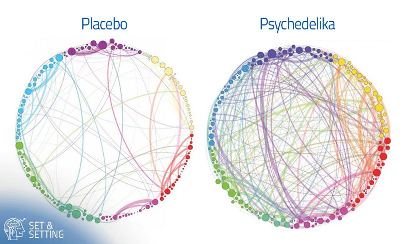 psychedelika psilocybin vs placebo verbindung drogen coaching