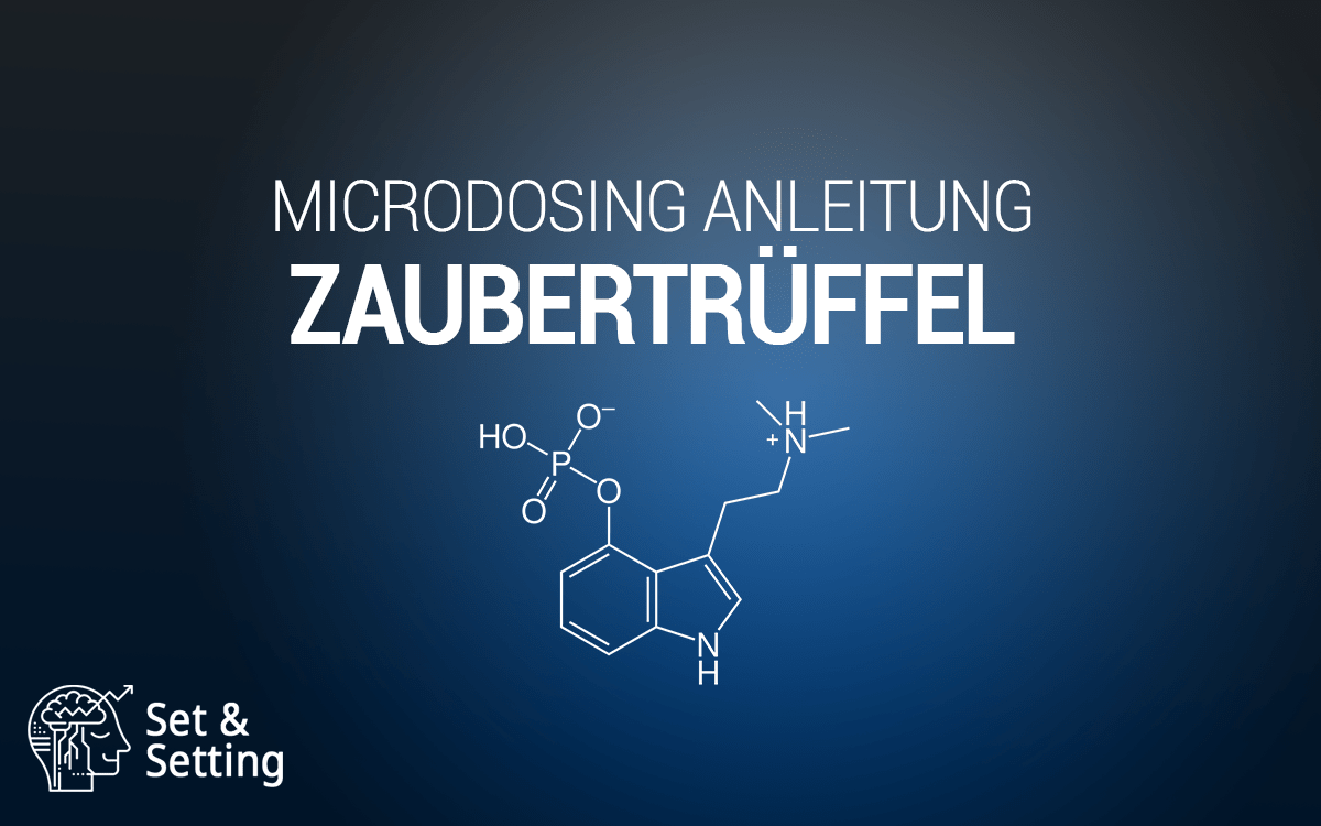 Magische Trüffel magic truffles Zaubertrüffel Microdosing Anleitung kaufen Onlineshop legal Deutschland